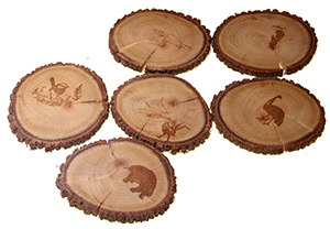 Set of 6 unique rustic Casurina Coasters with native animals