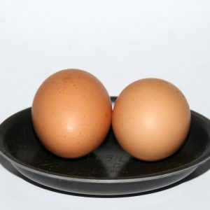 EGGLETs by Hillbilly set of 2