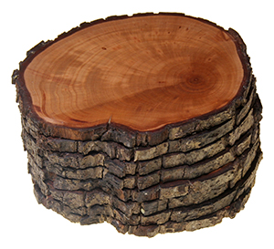 Contiguous Set of 8 unique rustic Pear Tree Coasters